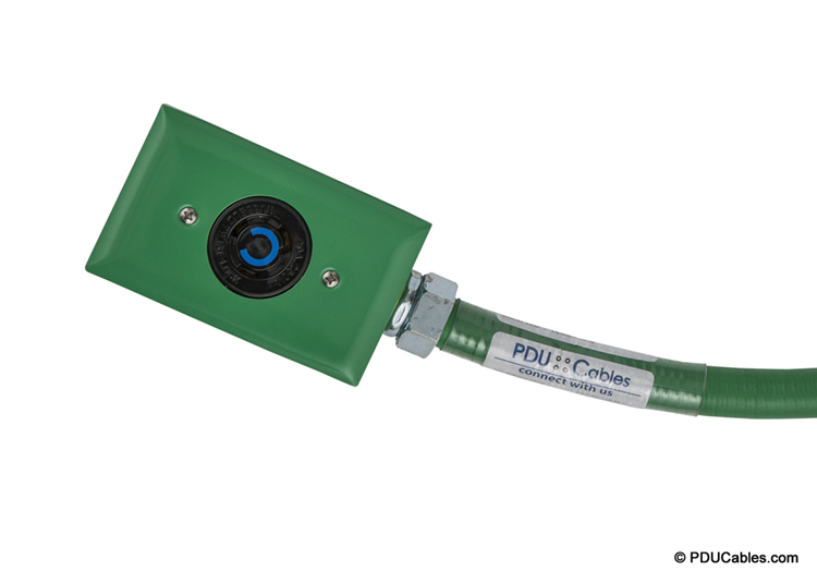 NEMA locking device with green red dot box, faceplate and conduit