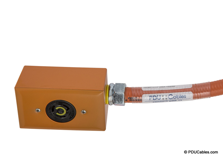 NEMA locking device with orange red dot box, faceplate and conduit