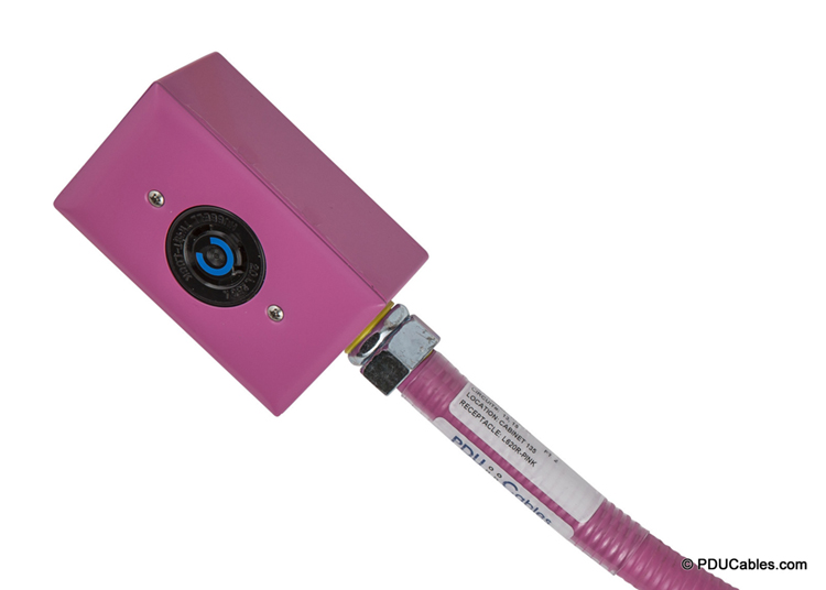 NEMA locking device in pink red dot box, faceplate and conduit