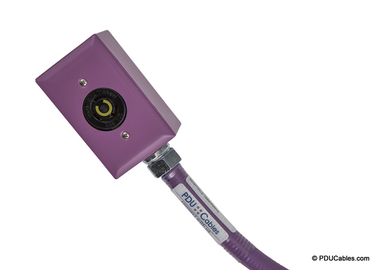 NEMA locking device in purple red dot box, faceplate and conduit